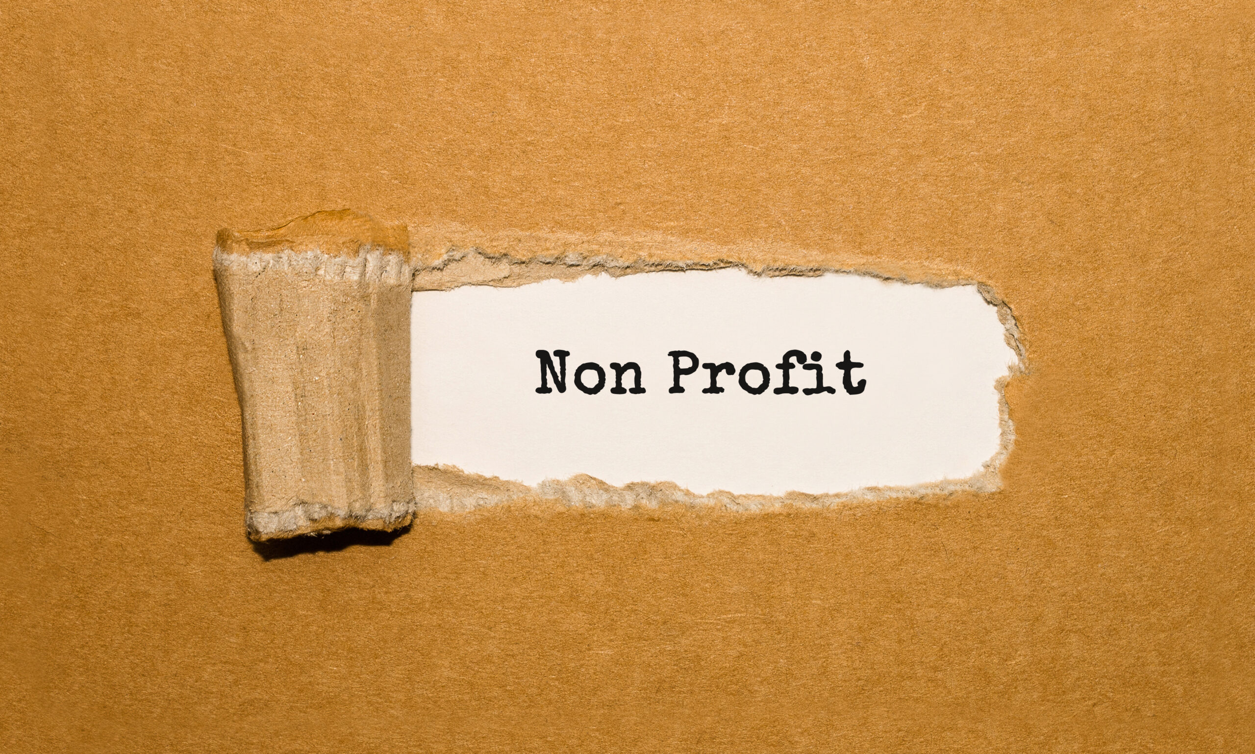 Duties of Charity & Not-For-Profit Board Members During the Pandemic