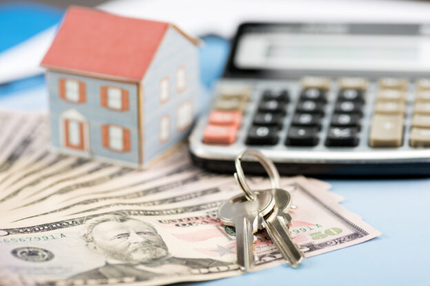 Tax delinquent US home owners